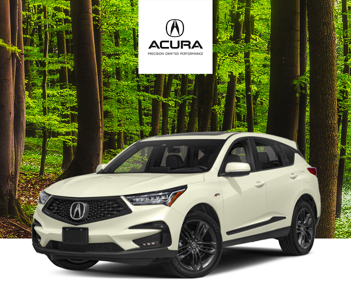 2019 acura rdx canyon bronze metallic used car reviews. Black Bedroom Furniture Sets. Home Design Ideas